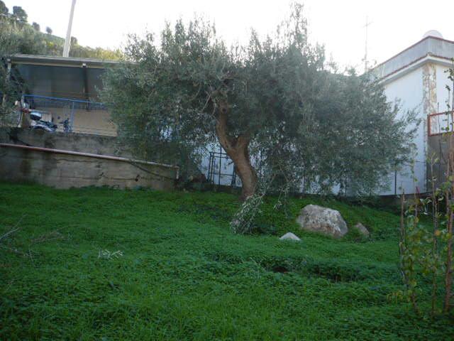 Arco immobiliare sicilia network dettaglio immobile - Piscina termini imerese ...